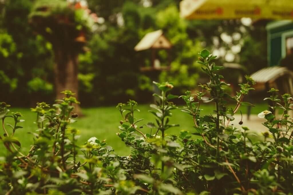 Stukje voor stukje tuinieren